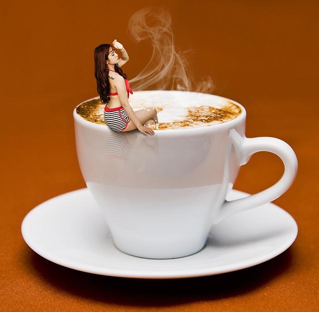 Les critères à considérer lors d'un achat d'une machine à café